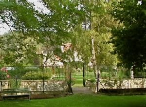daub's garden from fence