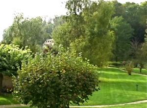 daub's garden