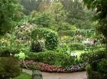 monet's garden again