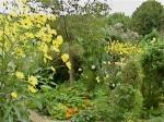 yellow monet's garden
