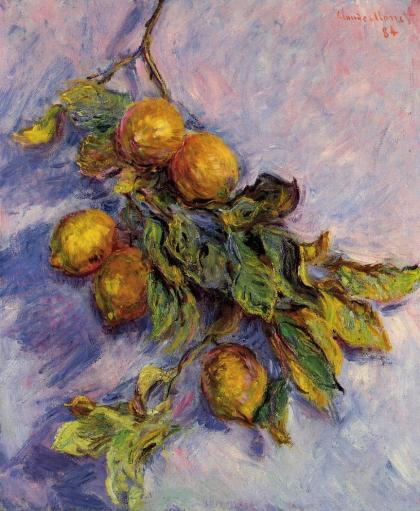 Monet's rendering of a branch of Menton lemons